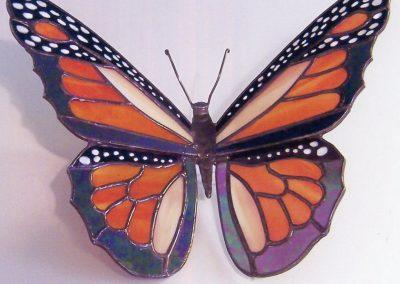 a-Butterfly11-Schneider, Bob
