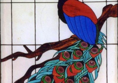 a-bird-peacock-Doyle, Terry 1998