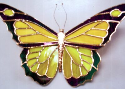 a-butterfly-Schneider, Bob 10
