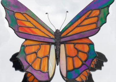a-butterfly 33-Schneider, Bob