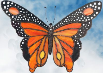 a-butterfly 38-Schneider, Bob
